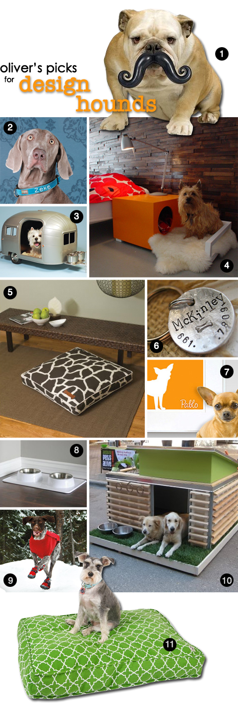 Oliver's Picks for Design Hounds