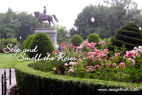 Celebrate Earth Day: Stop and Smell the Roses