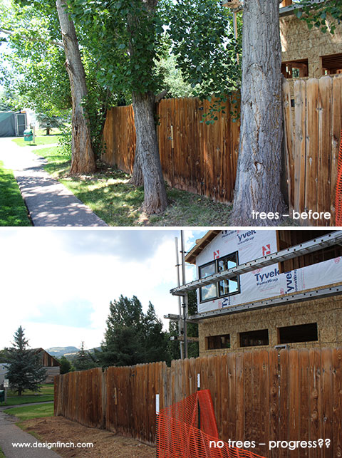 Construction Before & Progress – Trees