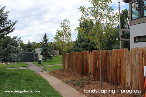 Home Remodel – Landscape Progress